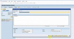 Custom fields in SAP