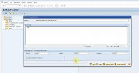 ManageEngine ServiceDesk Plus fields in SAP