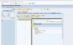 Screenshot attached to Solution Manager Support Message